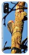 Northern Flicker At Sunrise IPhone Case