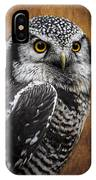 Northern Hawk Owl IPhone Case