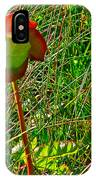 Northern Pitcher Plant In French Mountain Bog In Cape Breton Highlands-nova Scotia  IPhone Case