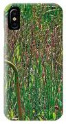 Northern Pitcher Plant In French Mountain Bog On Cape Breton Isl IPhone Case