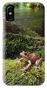 Northern Red-legged Frog IPhone Case