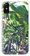 Nosy Komba Banana Palm IPhone Case
