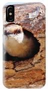 Nuthatch Bird In Nest IPhone Case