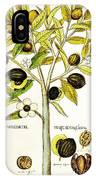 Nutmeg Plant Botanical IPhone Case
