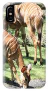 Nyalas At The Watering Hole IPhone Case