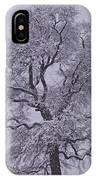 Oak In Snow IPhone X Case
