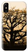 Oak Lit IPhone Case