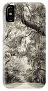 Oak Trees Of Charleston South Carolina In Sepia IPhone Case