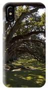 Oak Trees   #5794 IPhone Case