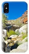 Oasis On Borrego Palm Canyon Trail In Anza-borrego Desert Sp-ca IPhone Case
