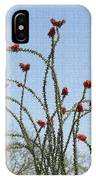 Ocatillo With Red Blossoms IPhone Case
