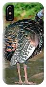 Ocellated Turkey IPhone Case