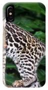 Ocelot Felis Pardalis Wildlife Rescue IPhone Case