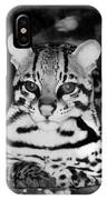 Ocelot In Repose IPhone Case