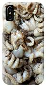 Octopuses IPhone Case