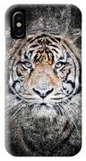 Of Tigers And Stone IPhone Case