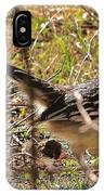 Off The Roadrunner IPhone Case