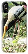 Oil Painting - Mama Stork Feeding Young IPhone Case