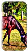 Old Bay Horse IPhone Case