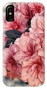 Old Fashion Azalea IPhone Case