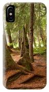 Old Growth Cedar At Cheakamus Lake IPhone Case