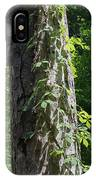 Old Growth  Loblolly Pine - Congaree Swamp IPhone Case