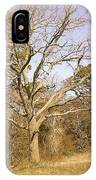 Old Haunted Tree IPhone Case