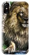 Old King Lion IPhone Case