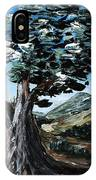 Old Olive Tree IPhone Case