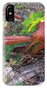 Old Rusty Bike In The Weeds 2 IPhone Case