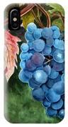 Old Vine Zinfandel IPhone Case