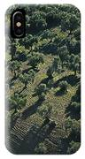 Olive Farmland In Spain IPhone Case