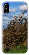 On Beachy Head Plants Bow To The Wind IPhone X Case