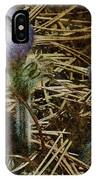 On The Forest Floor IPhone Case