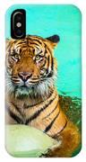 One Kool Cat IPhone Case