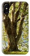 One Spring Tree IPhone Case