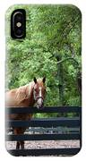 One Very Pretty Hilton Head Island Horse IPhone Case