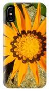 Orange Blossom Malaga Spain IPhone Case