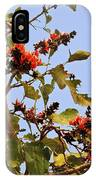 Orange Blossom Of The Kesuda IPhone Case
