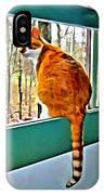 Orange Cat In Window IPhone Case