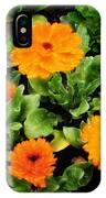 Orange Country Flowers - Series I IPhone Case