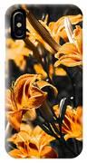 Orange Daylily Flowers On Gray 5 IPhone Case