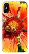 Orange Fiery Gaillardia Flower And Bee Macro IPhone Case