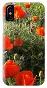 Orange Poppies In Sunlight IPhone Case