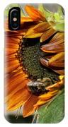 Orange Sunflower And Bee IPhone Case