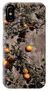 Orange Tree On Rustic Background IPhone Case