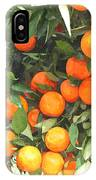 Orange Trees With Fruits On Plantation IPhone Case