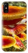 Orange V4 IPhone Case