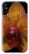 Orchid 16 IPhone Case