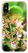 Orchid (epidendrum Stamfordianum) IPhone Case